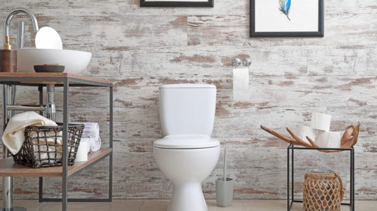History of the Bathroom: A Look at How the Modern Bathroom Came to Be